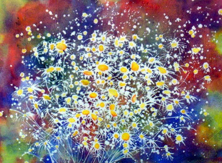 A View of Daisies