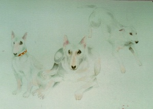 "A ""triptyche"" of the same dog - watercolour on paper."