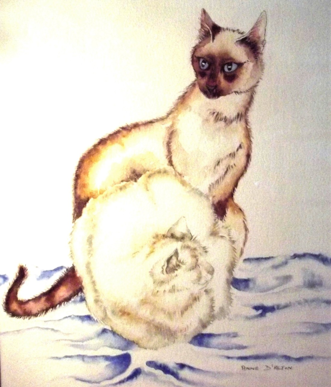 2 cats (2).jpg